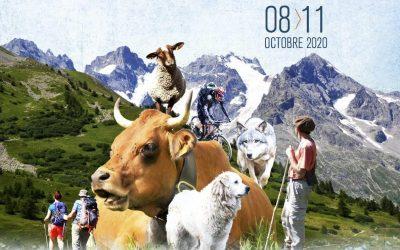 15ème festival international du film Pastoralismes et Grands Espaces 8/11 octobre à Grenoble